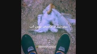 Sadegh_Par