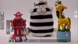 Fujifilm X-T2 video Focus in video