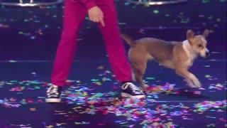 نمایش فوق العاده الکسا گوینت در مسابقه سوپرتلنت