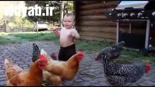 علت گران شدن تخم مرغ این کوچولو بوده
