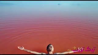 دریاچه صورتی ( دریاچه مهارلو شیراز)