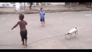 طناب بازی جالب سگ !
