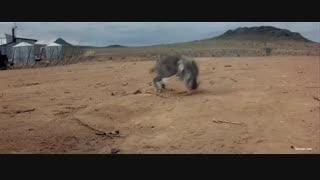 فیلم مکس دیوانه 2: جنگجوی جاده Mad Max 2: The Road Warrior 1981