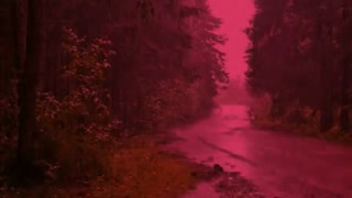 موسیقی متن فیلم «در حال و هوای عشق»