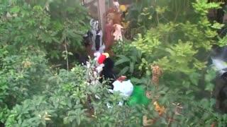 دوربین مخفی تارزان در باغ وحش