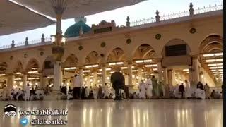 سلام و درود بی پایان بر ختم رسل حضرت محمد ص