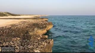 جزیره شیدور