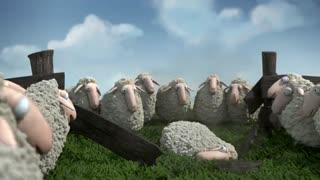 انیمیشن گوسفند