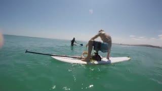 پیدا کردن هشت پای غول پیکر هنگام موج سواری