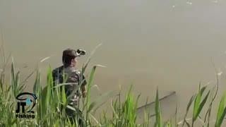 فیلم اموزش تخصصی ماهیگیری کپور