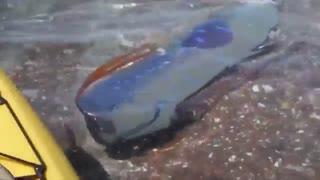 بزرگترین ماهی Oarfish فیلمبرداری شده
