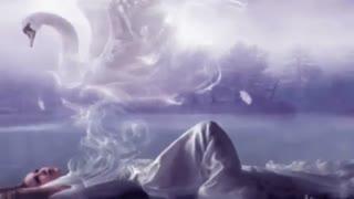 او بر نمی گردد : شاعر شهراد میدری با دکلمه ی  صالح قدک زاده