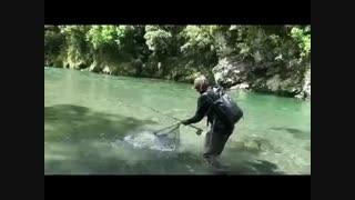 ماهیگیری قزل الا
