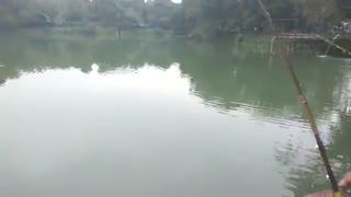 فیلم اموزش ماهیگیری کپور