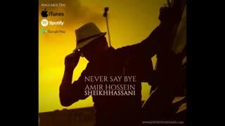 امیرحسین شیخ حسنی - هرگز نگو خداحافظ