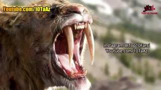 ۱۰ حیوان بی نظیر که منقرض شدند!!!!!