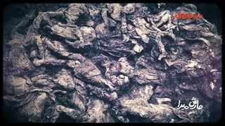 مارش میرا | روایت بزرگترین نسل کشی بعد از جنگ جهانی دوم