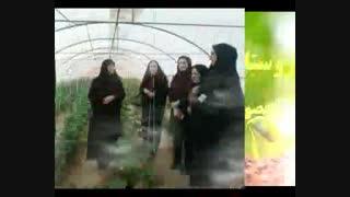 گذری بر زندگی زنان روستایی