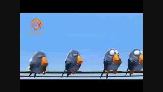 برای پرندگان - کار زیبایی از کمپانی پیکسار