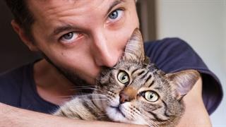 دوستی گربه ها با صاحبانشان